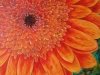 Linda Moskalyk - \'Bee\'s Eye View\'