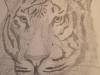 Student Art, Graphite